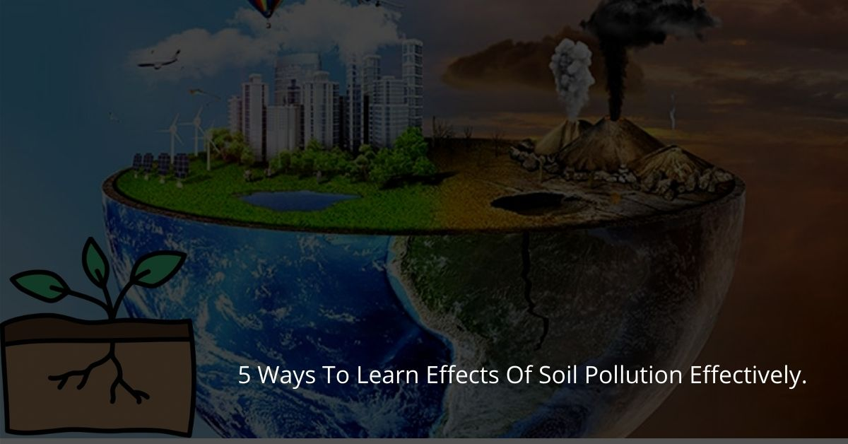 5 Ways To Learn Effects Of Soil Pollution Effectively.