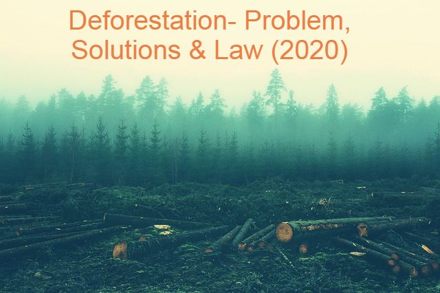 Deforestation- Problem, Solutions & Law (2020)