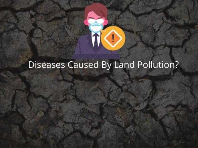 Diseases Caused By Land Pollution